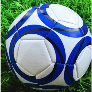 ลูกฟุตบอล หนังเย็บ