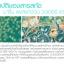 Sena Marine Plankton Water Serum Concentrate 150ml. thumbnail 4