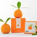 Satsuma อาหารเสริมจากส้มสายพันธ์ซัทสึมะจากญี่ปุ่น ฝ้าจางลงอย่างเห็นได้ชัด