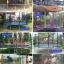 แทรมโพลีน 16 ฟุต สีรุ้ง สปริงบอร์ด trampoline ขนาดใหญ่สุด เหมาะสำหรับออกงาน thumbnail 2